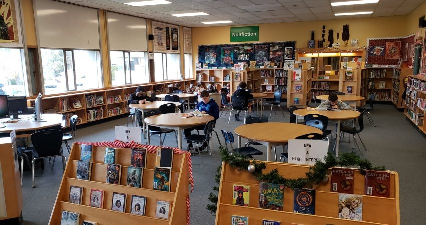 Students engaged in their learning in the library